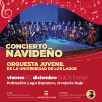 concierto-naviden%cc%83o-2019